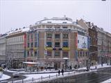 bila-labut-wenceslas-square.jpg